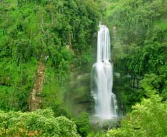 Thenmala Vacation Package