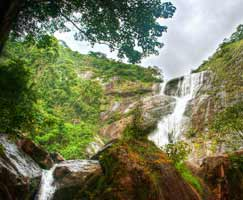 Holiday Package Thenmala