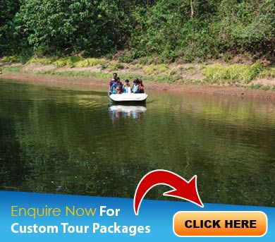 Thenmala Tour Packages